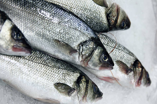 Information About Omega-3 Fish Oils
