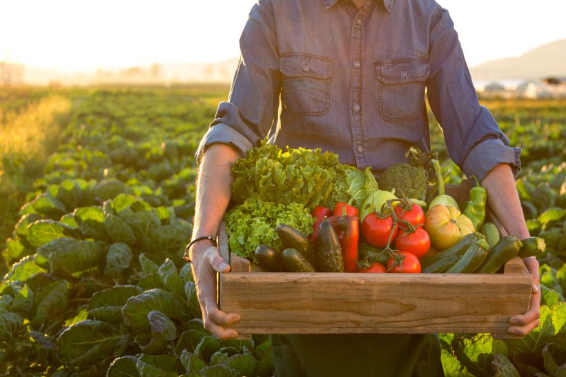 Organic Foods Equal Improved Health