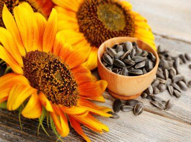 10 Best Foods For Eye Health And Eyesight