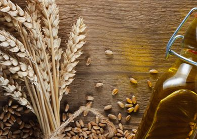 5 Healthy Reasons To Add Wheat Germ Oil In Your Daily Diet